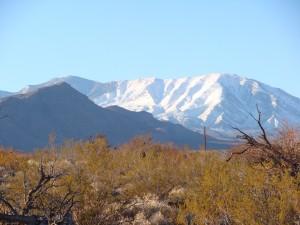 Western Shoshone Land